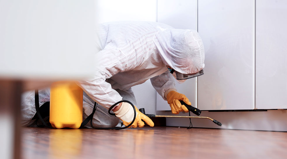 find best pest control company