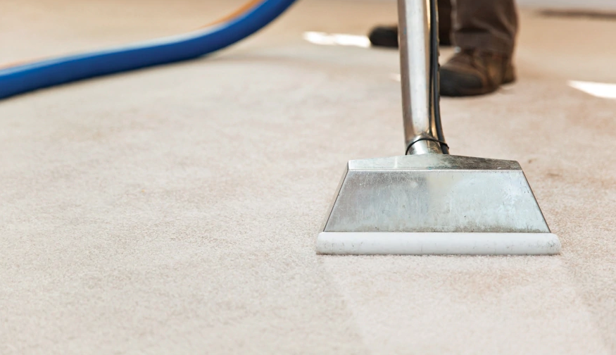 hire best carpet cleaning professional